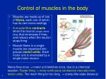 control of muscles in the body