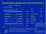 coordinating glottal and oral constrictions29