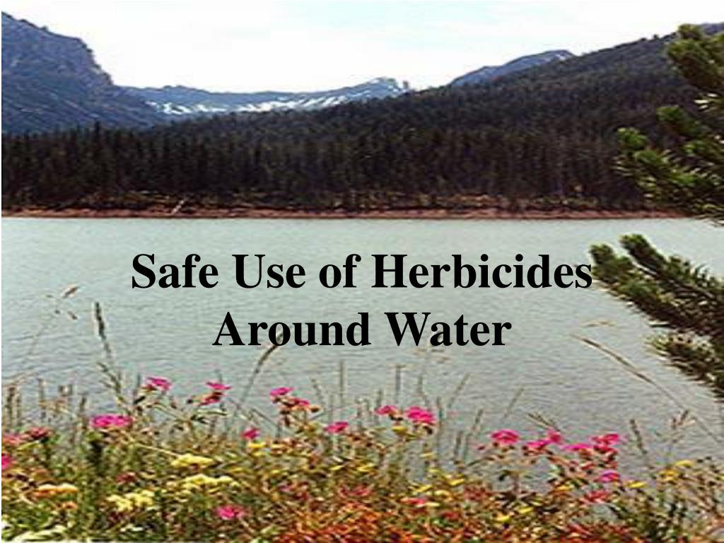 safe use of herbicides around water l.