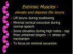 extrinsic muscles elevate and depress the larynx