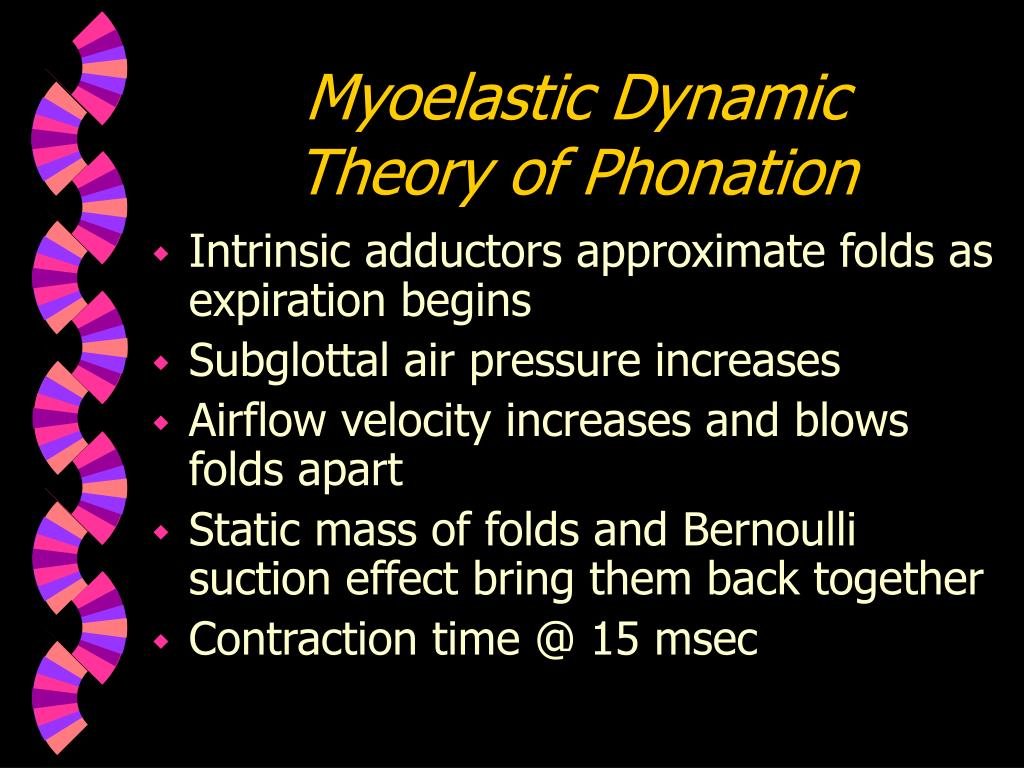 Myoelastic Dynamic