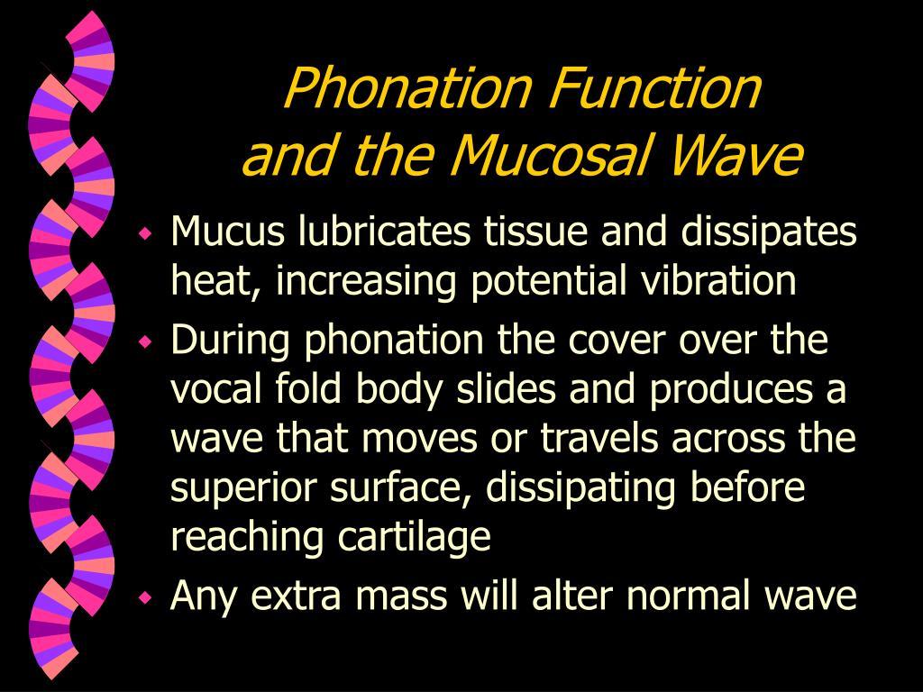 Phonation Function