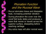 phonation function and the mucosal wave