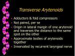 transverse arytenoids