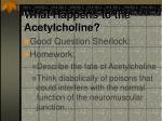 what happens to the acetylcholine