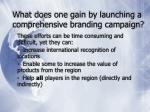 what does one gain by launching a comprehensive branding campaign