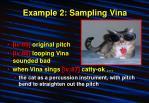 example 2 sampling vina