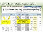 bavl report budget available balance15