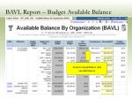bavl report budget available balance17