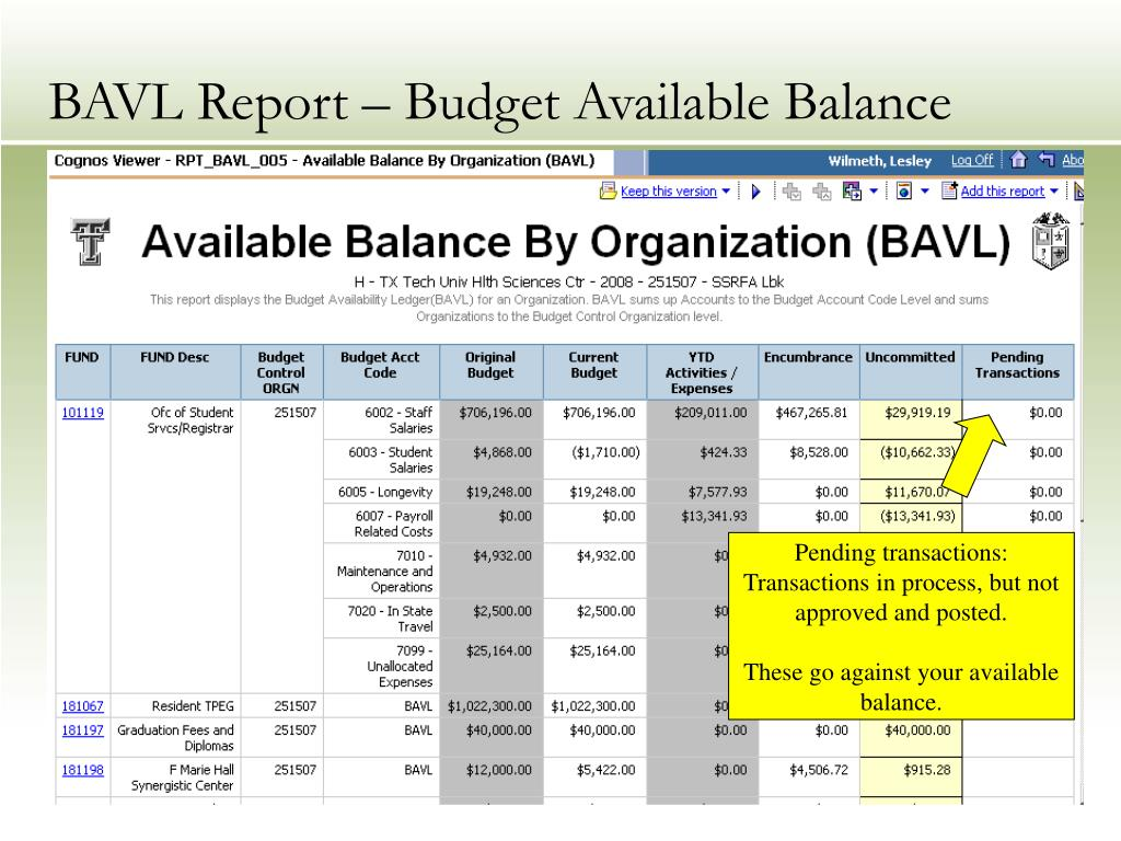 BAVL Report – Budget Available Balance
