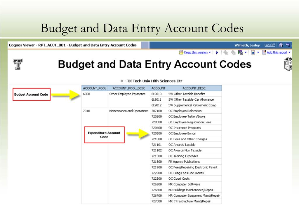 Budget and Data Entry Account Codes