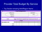 provider total budget by service