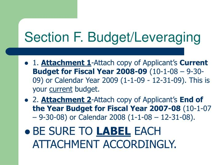 Section F. Budget/Leveraging