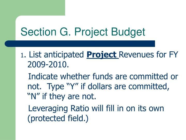 Section G. Project Budget