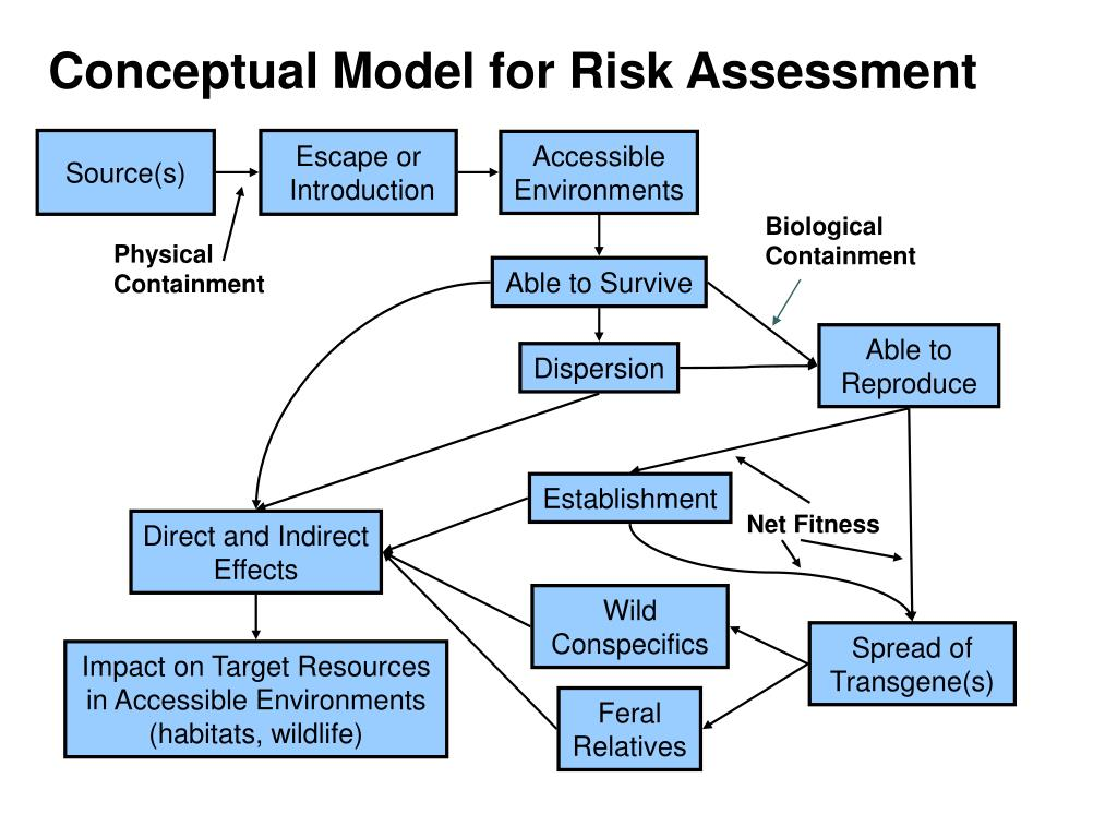 Conceptual Model for Risk Assessment