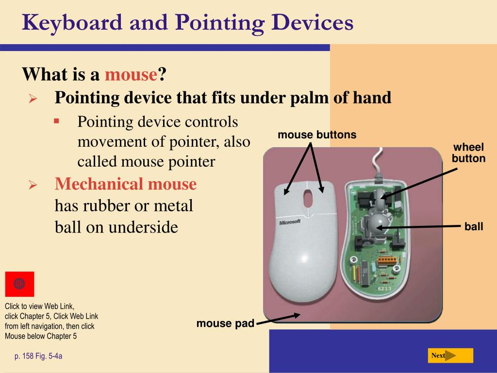 Keyboard and Pointing Devices