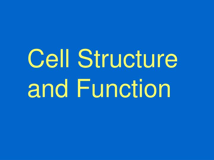 cell structure and function n.