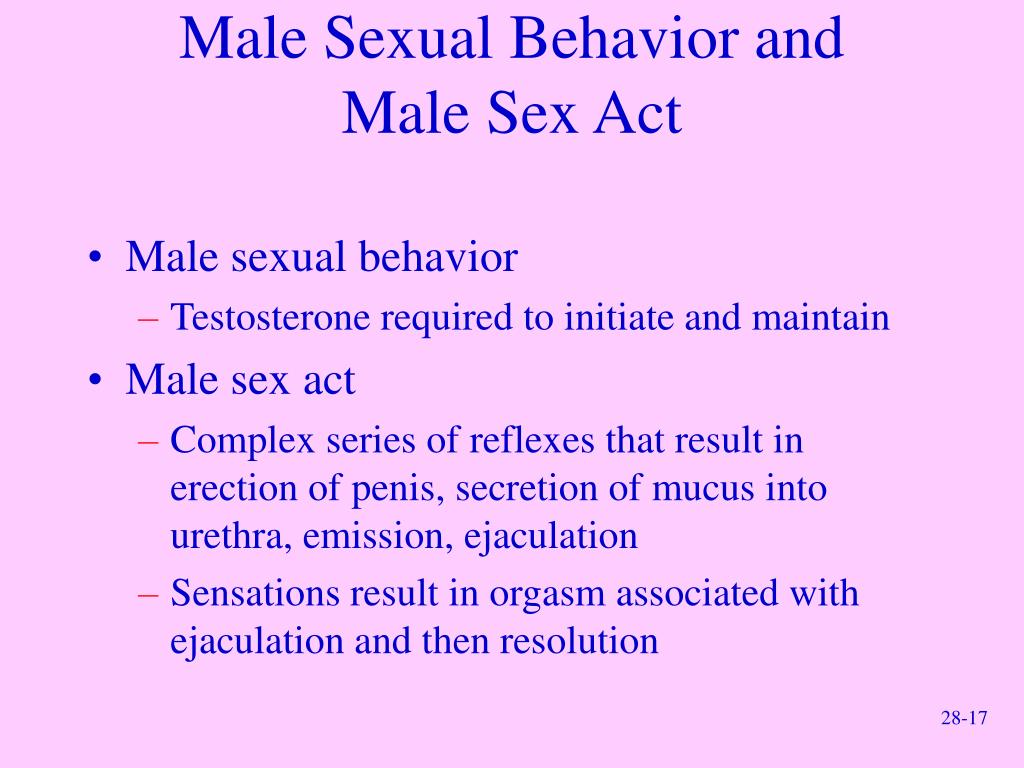 Male Sexual Behavior and