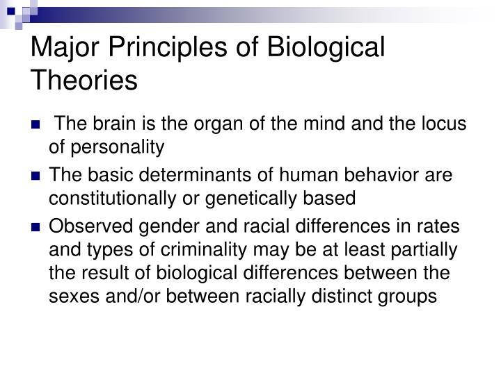 biological theories and criminal behavior