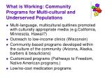 what is working community programs for multi cultural and underserved populations
