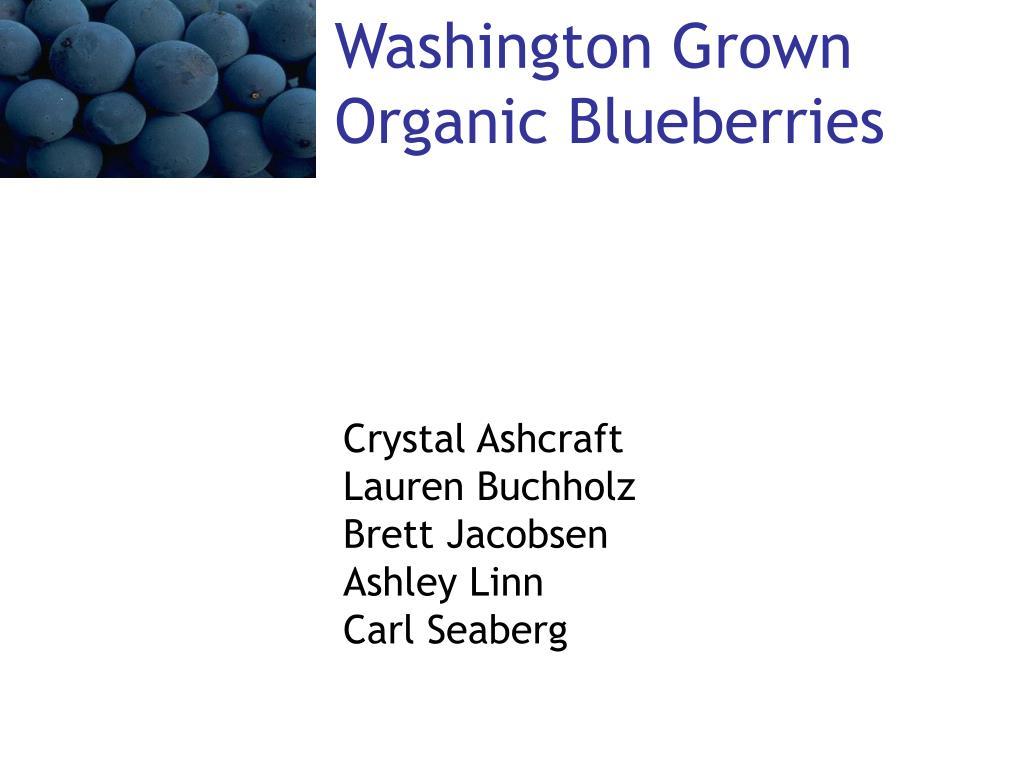 washington grown organic blueberries l.