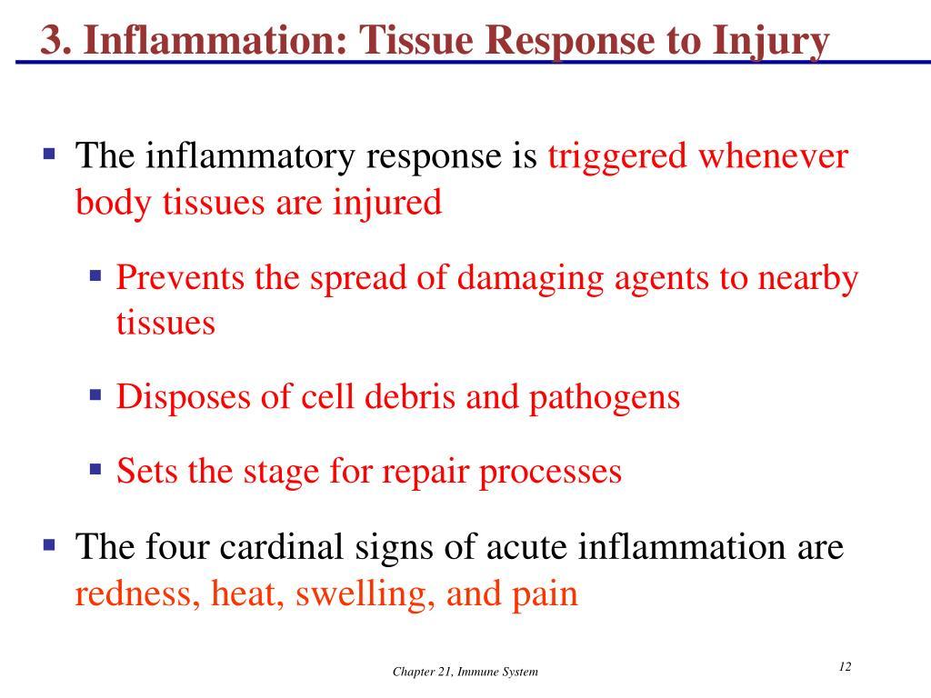 3. Inflammation: Tissue Response to Injury