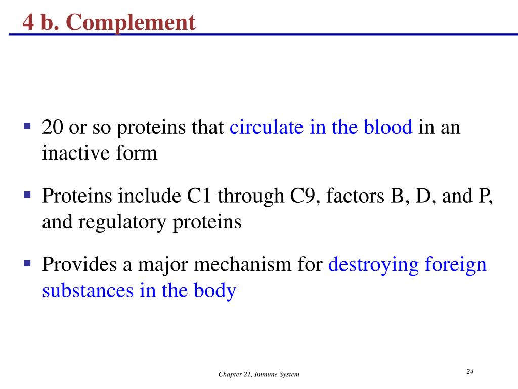 4 b. Complement