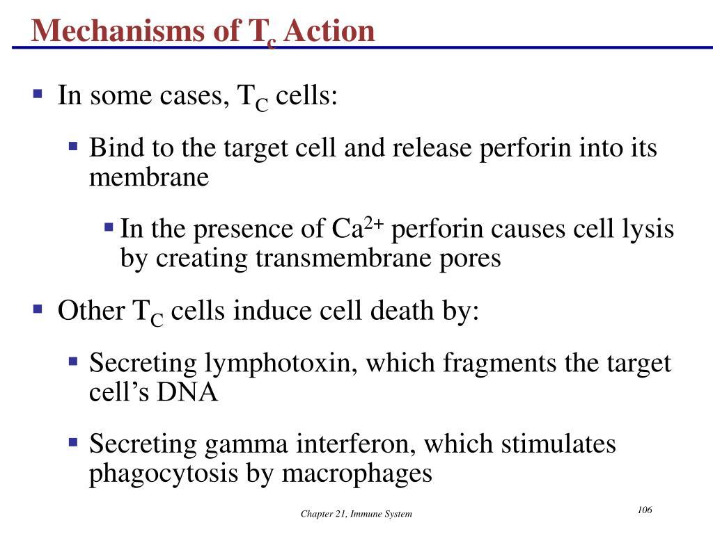 Mechanisms of T