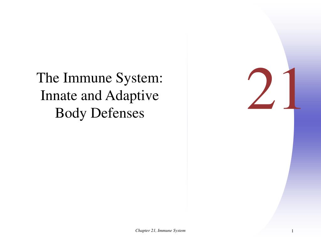 The Immune System: