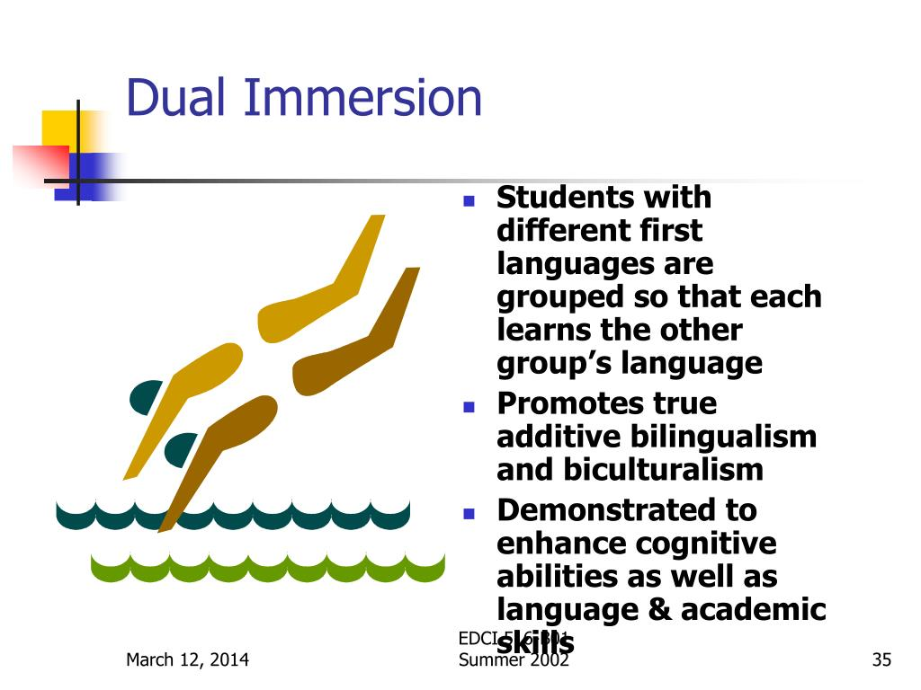 Dual Immersion