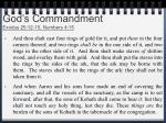 god s commandment exodus 25 12 15 numbers 4 15