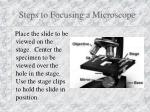 steps to focusing a microscope7