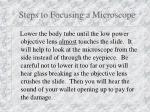 steps to focusing a microscope8
