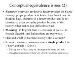 conceptual equivalence issues 2