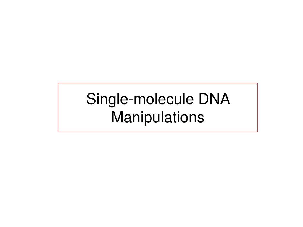 single molecule dna manipulations l.