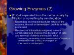 growing enzymes 2