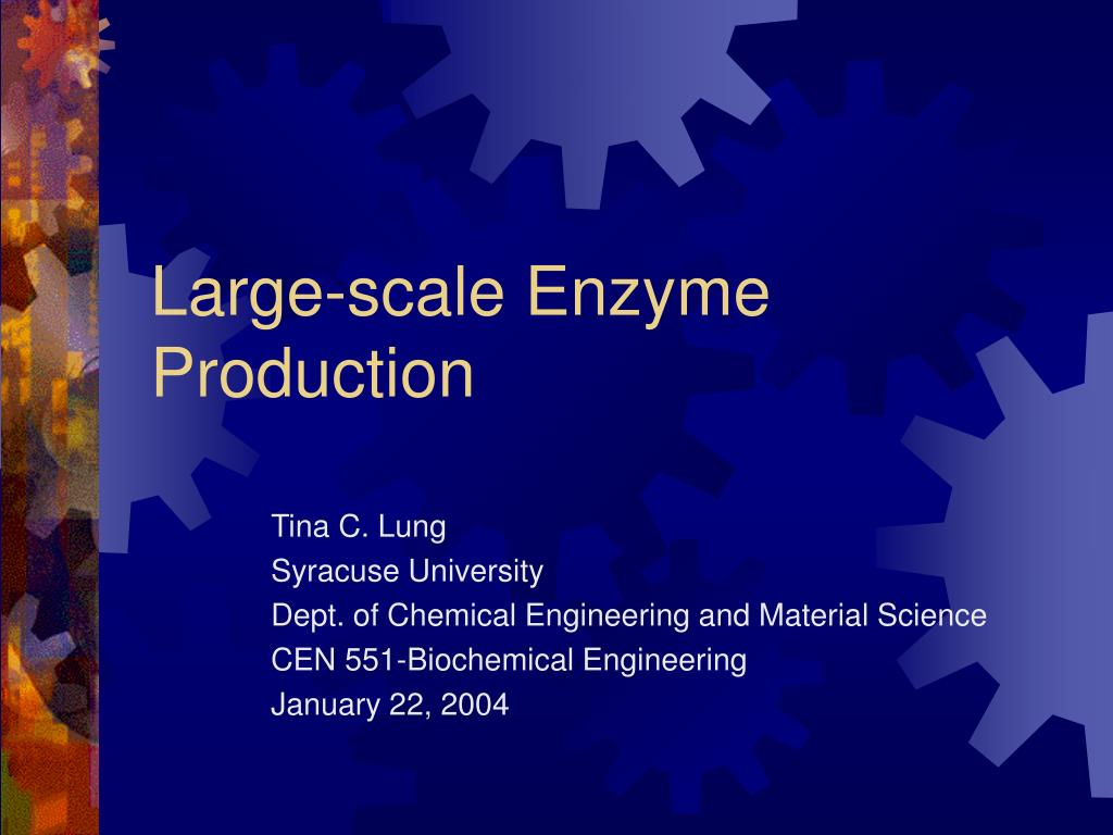 large scale enzyme production l.