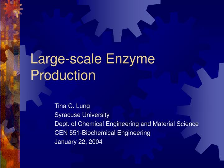 large scale enzyme production n.