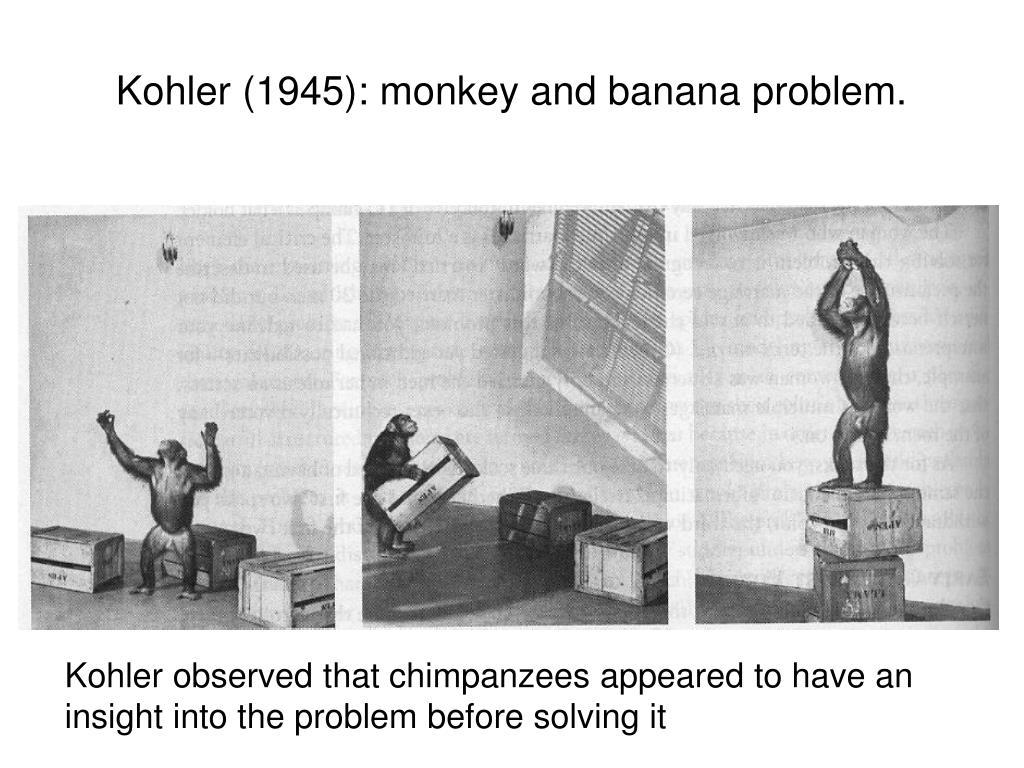 Kohler (1945): monkey and banana problem.