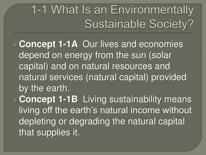 1-1 What Is an Environmentally Sustainable Society?