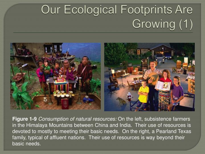 Our Ecological Footprints Are Growing (1)