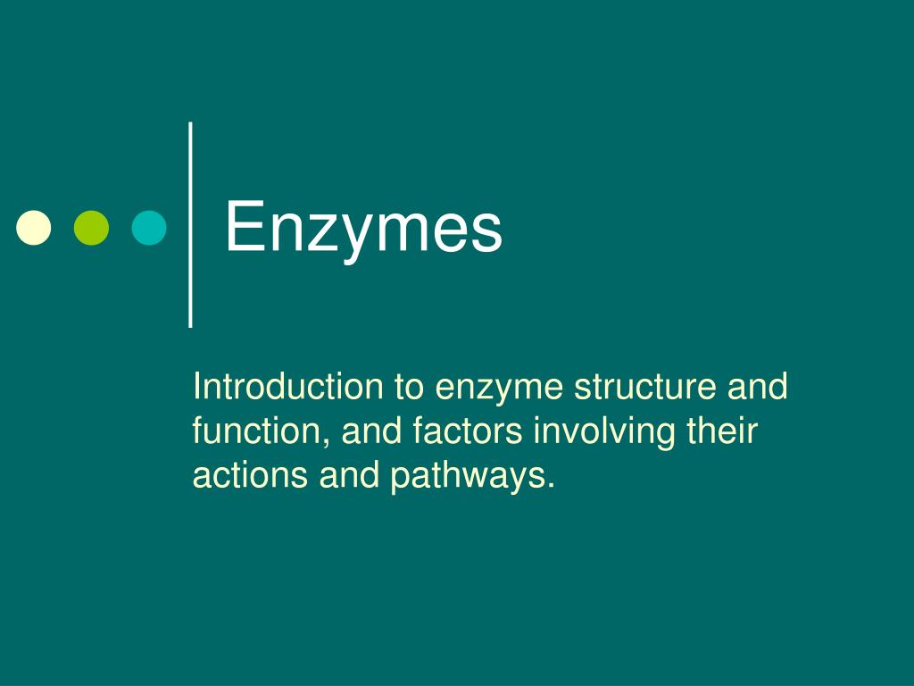 an introduction to the enzyme catalase The liver: helping enzymes help you introduction your liver is catalase is an enzyme in the liver that breaks down harmful hydrogen peroxide into oxygen and.