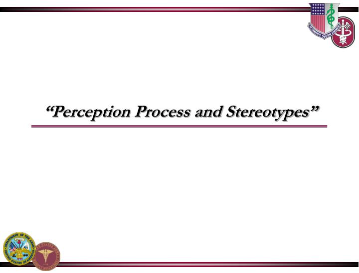 perception process and stereotypes n.