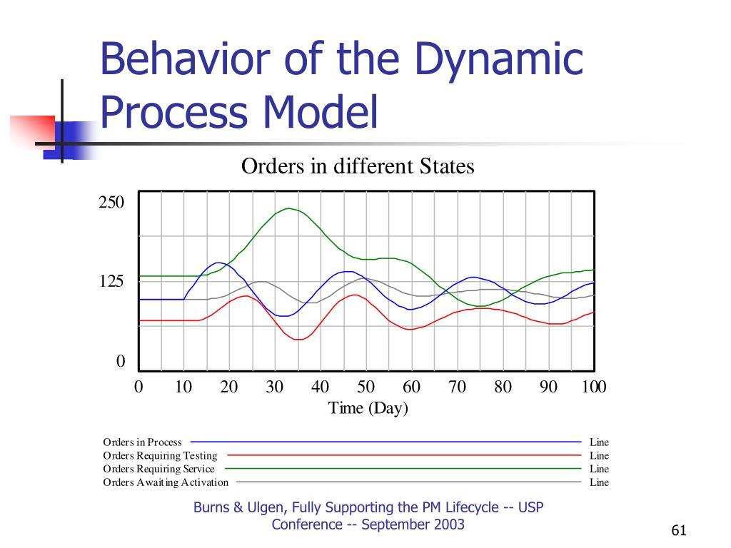 Behavior of the Dynamic Process Model
