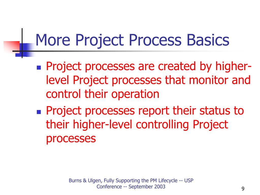 More Project Process Basics