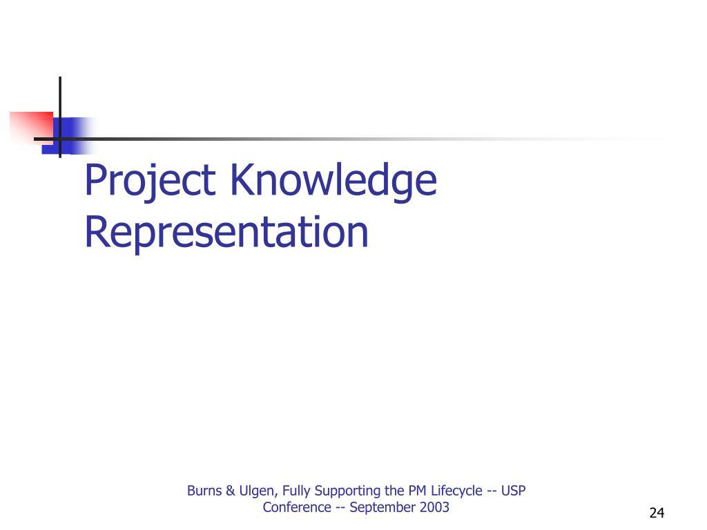 Project Knowledge Representation