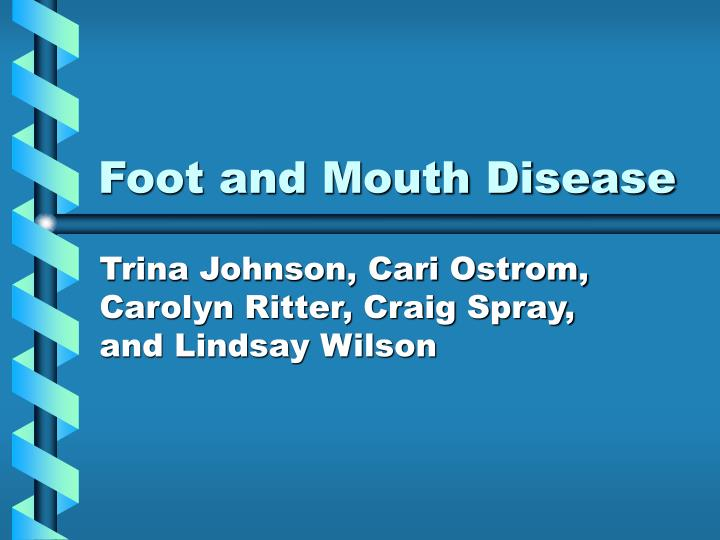 foot and mouth disease n.