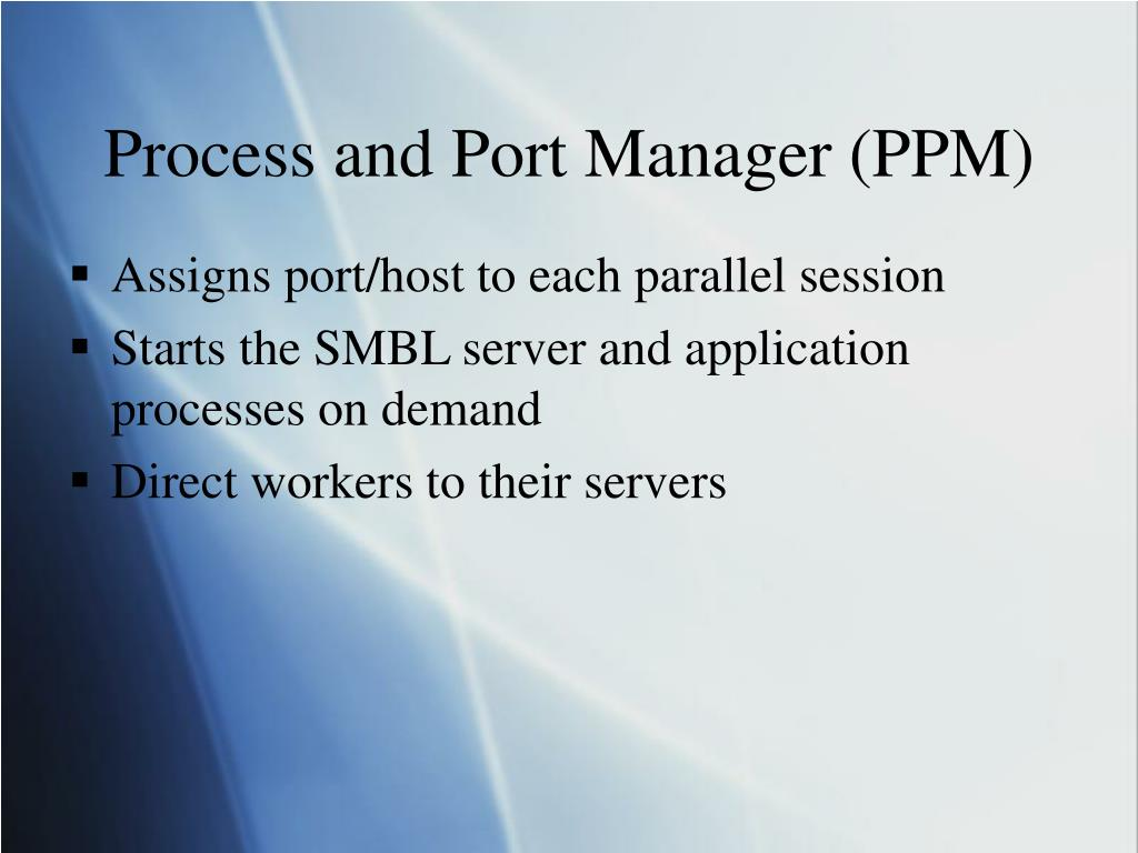 Process and Port Manager (PPM)