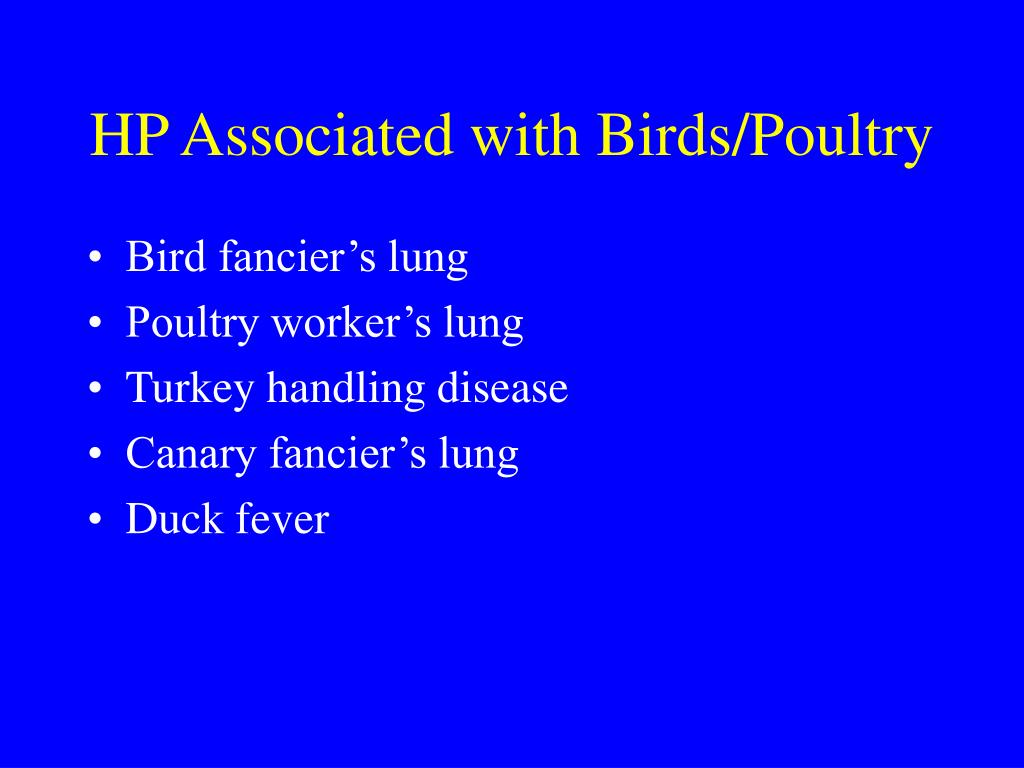 HP Associated with Birds/Poultry