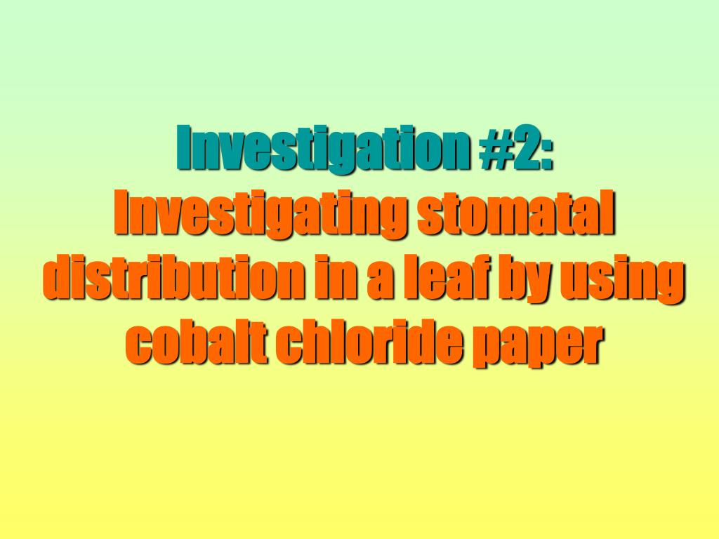 Investigation #2: